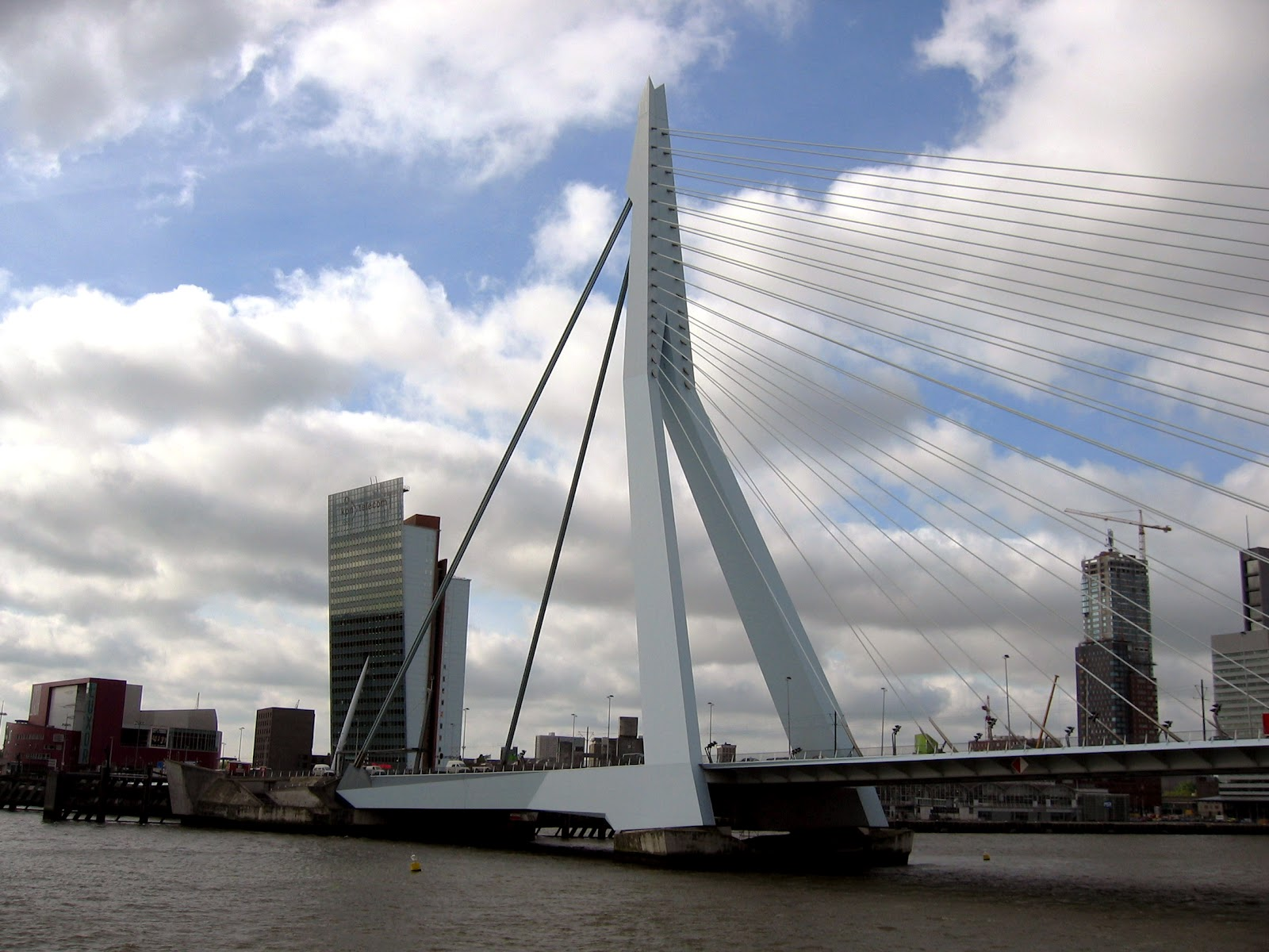 Erasmusbrug Erasmus Bridge Rotterdam The Netherlands