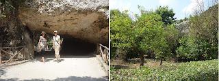 Tour português área arqueológica Siracusa