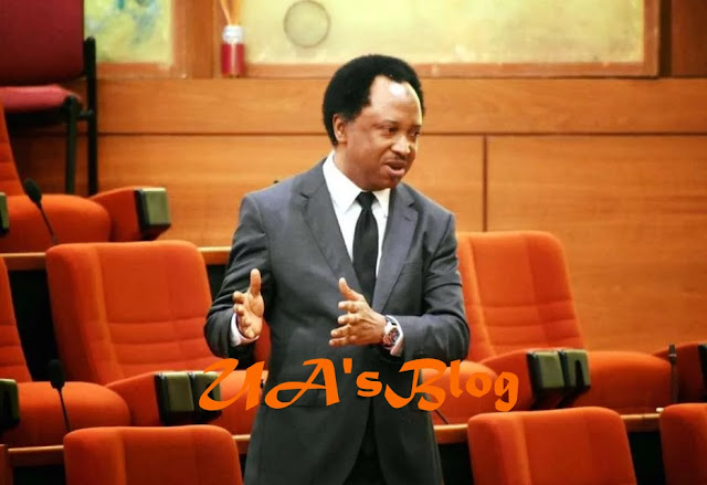 APC lifts Shehu Sani's suspension from party