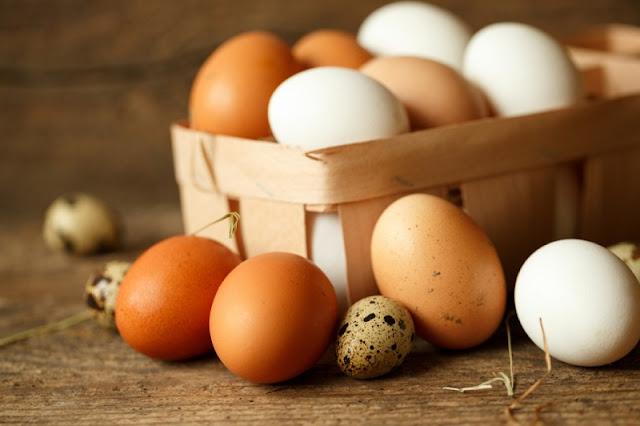 Khasiat dan Manfaat Mengkonsumsi Telur