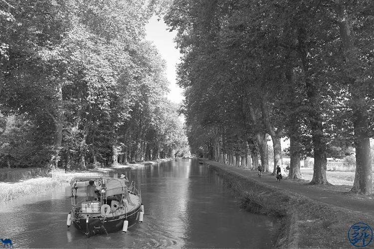 Le Chameau Bleu - Blog Voyage sur le Canal des Deux Mers à Vélo -  Bateau sur le canal latéral de Garonne