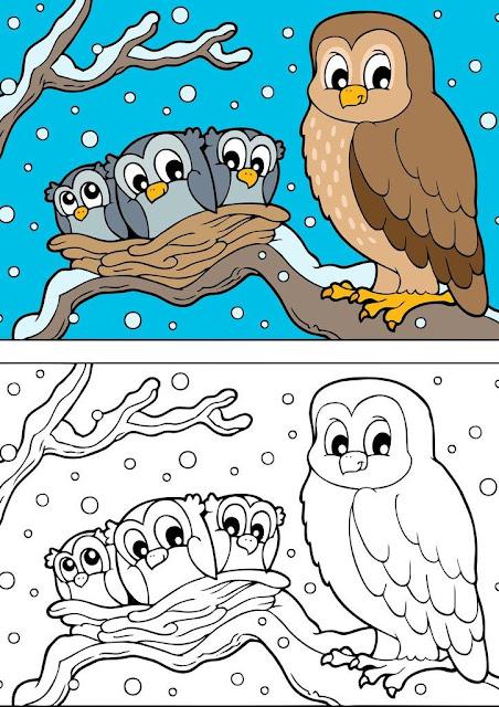 dibujo búho con sus crías en nido para colorear