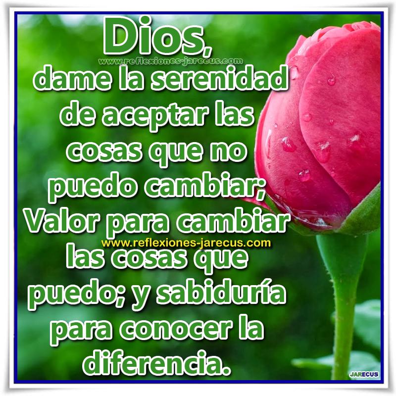 Dios dame la serenidad de aceptar las cosas que no puedo cambiar; Valor para cambiar las cosas que puedo; y sabiduría para conocer la diferencia.