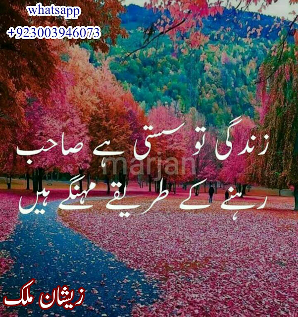 Dosti To Sasti hai Sahib | 2 Lines Poetry | 2 Lines Urdu Sad Poetry | Urdu Sad Poetry Images | Poetry Images - Urdu Poetry World