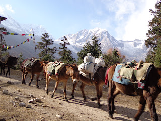 Manaslu trekking picture before Samagaon Manaslu base village