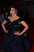 Payal Ghosh aka Harika in Dark Blue Deep Neck Sleeveless Gown at 64th Jio Filmfare Awards South 2017 ~  Exclusive 004.JPG