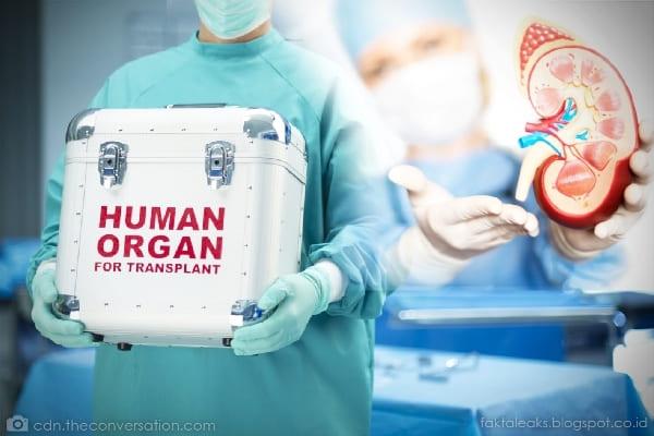Perdagangan Organ Tubuh Manusia