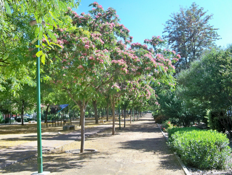 Gel n noticias la acacia de constantinopla tambi n for Cabalgata ciudad jardin sevilla 2016