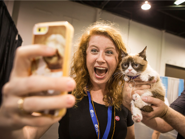 Social networking site Snapchat introduced new selfie filters that specifically meant for your cat