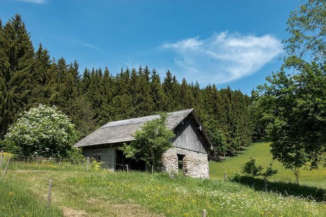 Gaisberg und Nockstein von Koppl  Wanderung FuschlseeRegion  Wandern Salzkammergut 14