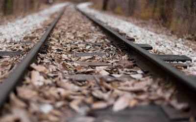 leaves on railroad widescreen resolution hd wallpaper