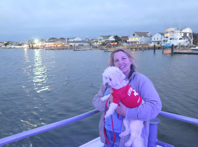 We loved taking our dog Phoebe on a dog friendly Sunset Boat Cruise on Captain Lou's Fleet from Freeport, Long Island #dogfriendly #dog