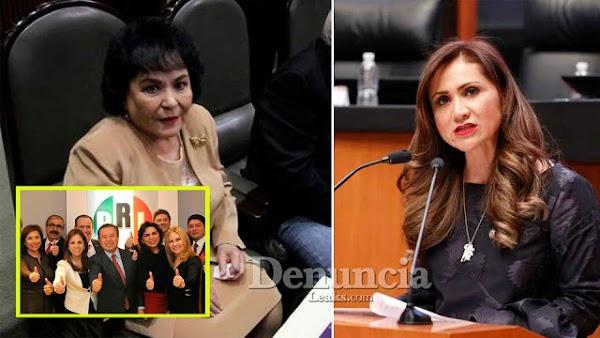 "Senadora crea INICIATIVA para establecer como REQUISITO ""título y cédula profesional"" para ser diputados"