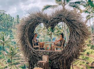 Ubud Bali Swing Club