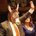 Lanzan a un burro como candidato a la alcaldía de Ciudad Juárez