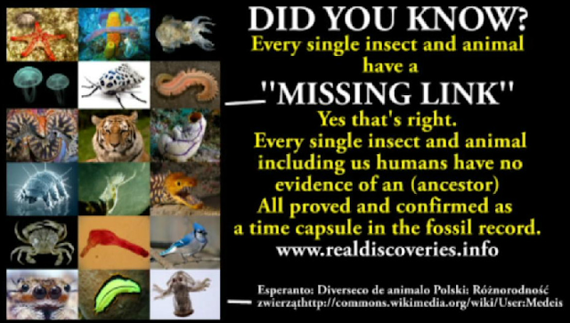 "DID YOU KNOW that every single insect and animal has a ""missing link?"" Yes that's right. Every single insect and animal including us humans has no evidence of an ancestor. All proved and confirmed as a time capsule in the fossil record."