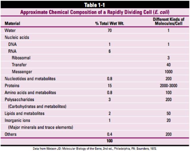Tabel Komponen Makromolekul dalam Sel