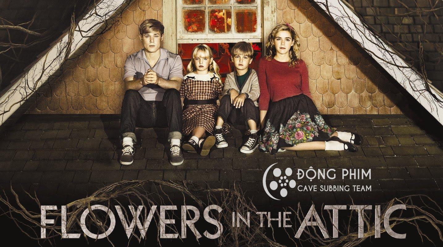 Xem Phim Những Bông Hoa Trên Tầng Áp 2014