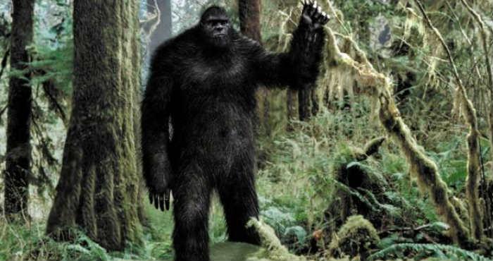 Mengungkap Misteri Makhluk Bigfoot Dan Keberadaannya