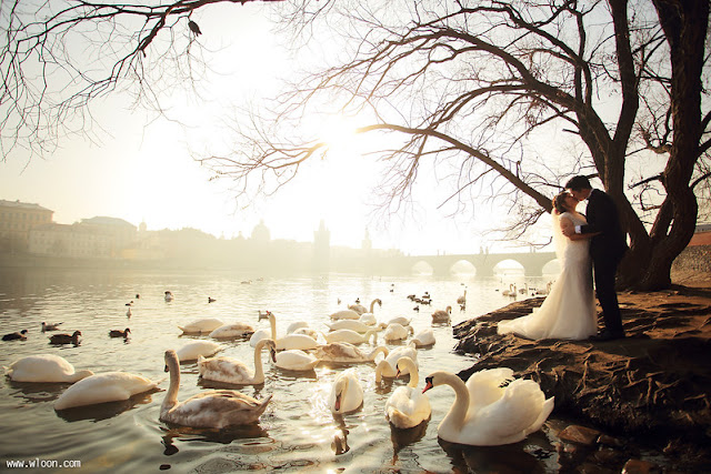 prague wedding shoot