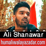 shiahd.blogspot.com/2017/09/ali-shanawar-nohay-2007-to-2018.html
