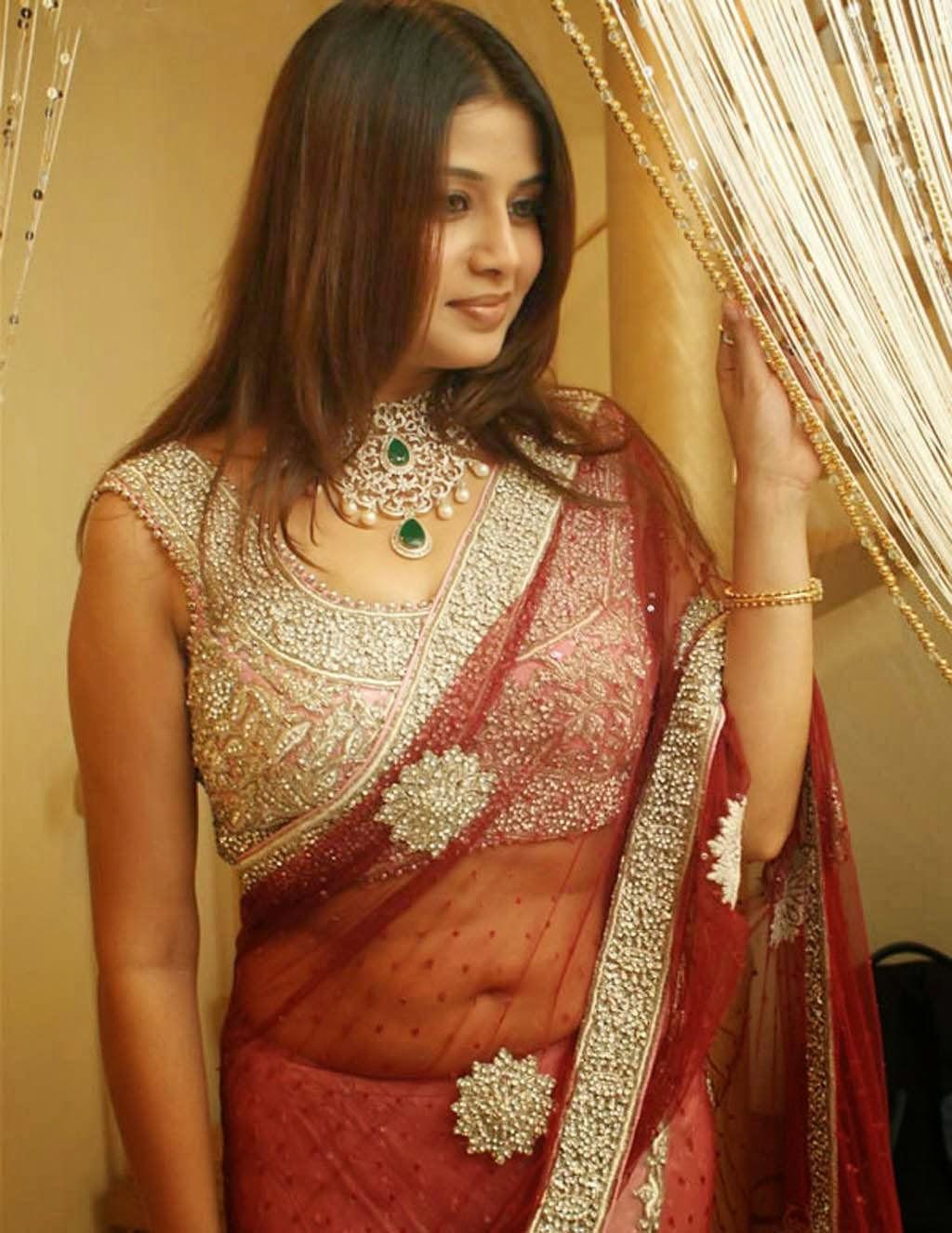 Transparent Saree: Sangeetha Transparent Saree