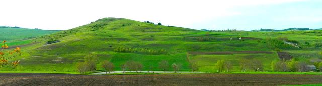 divan-pogled-panorama-plantaza