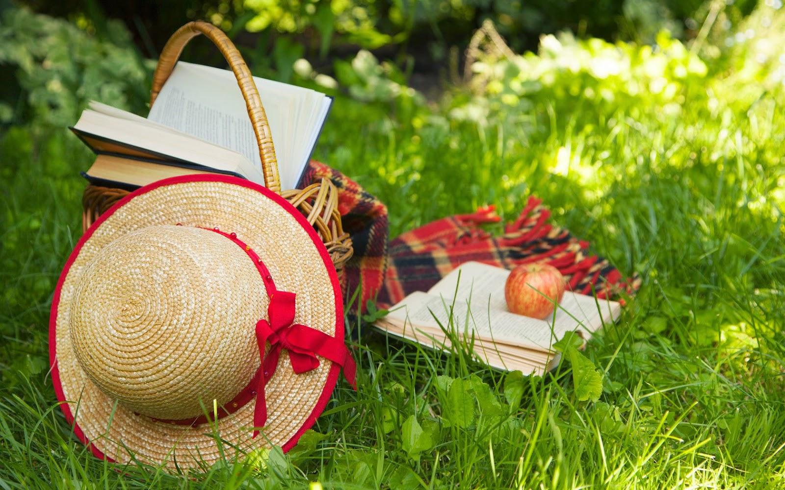 Picknick ophet gras met een kleed, hoed en boeken
