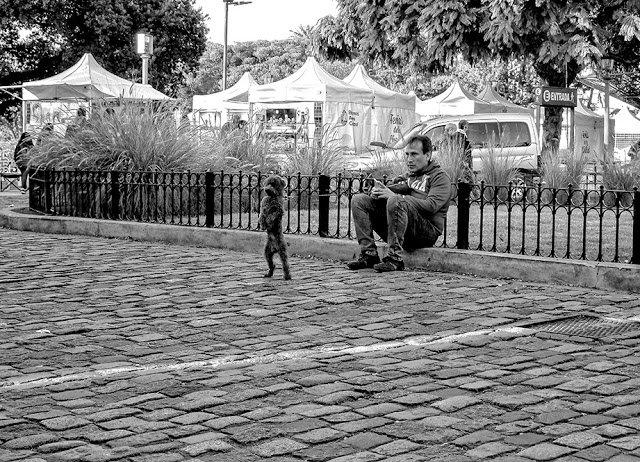 Un hombre sentado y su perrito parado en dos patas.