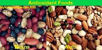Antioxidants Beans and Nuts