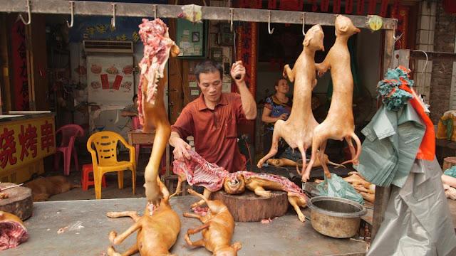 festival-carne-yulin
