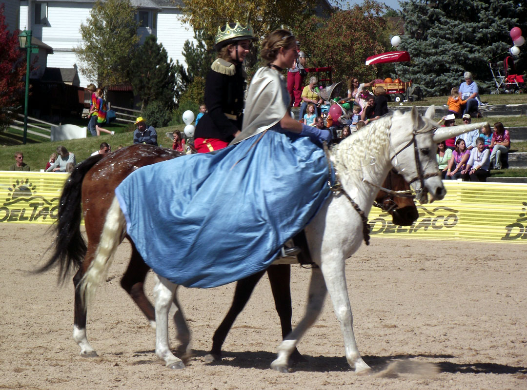 ANMS 2015 – Horse Fancy Dress | Morgan Horse Association ... |Horse Fancy Dress Costumes