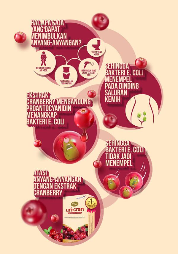 Infografis Penyebab Anyang-Anyangan