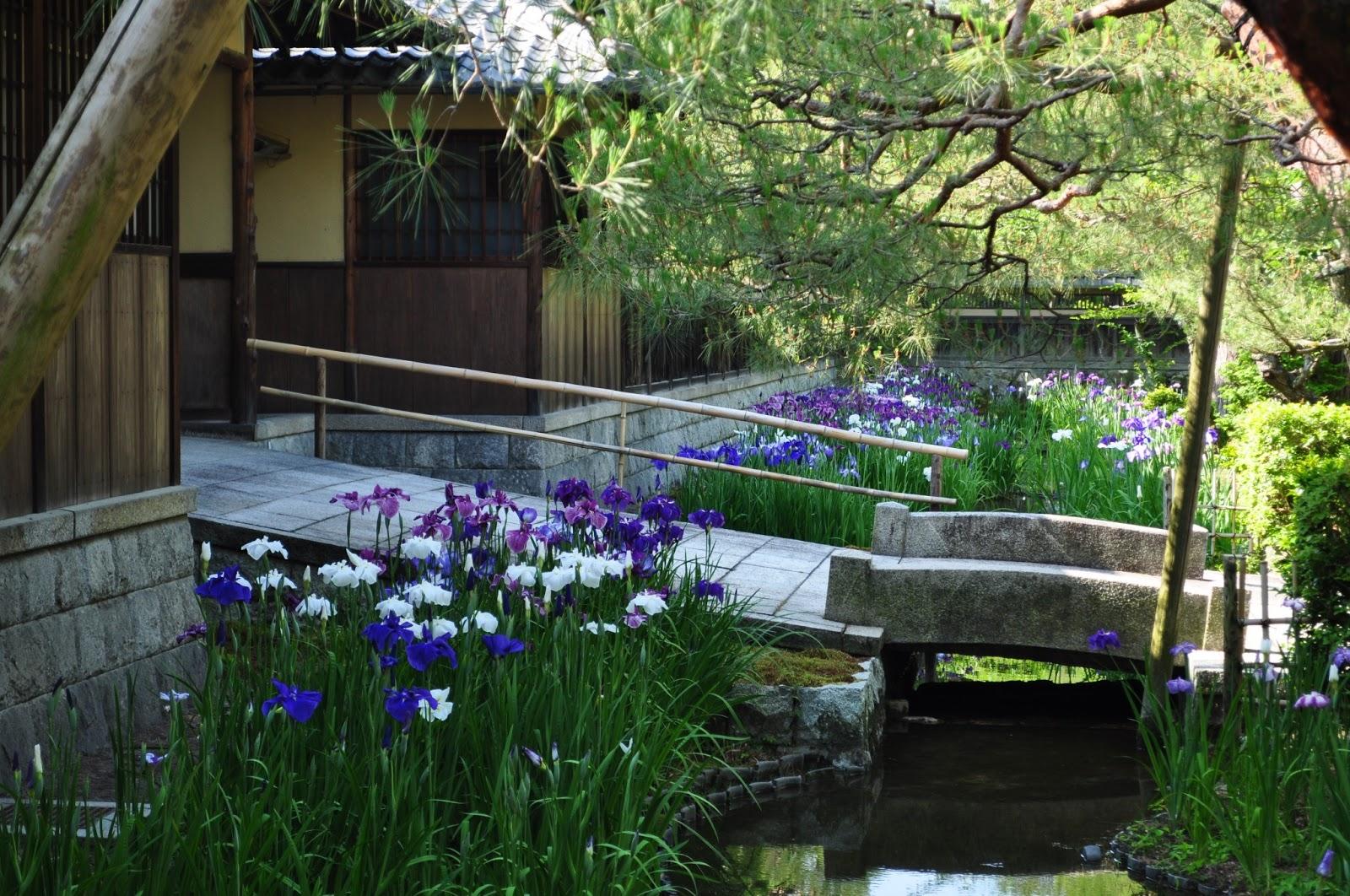 京都日和 〜 Kyoto Biyori ~ : ...