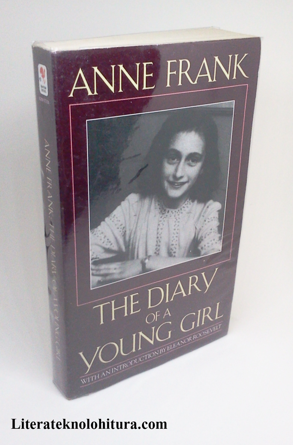 book review  anne frank