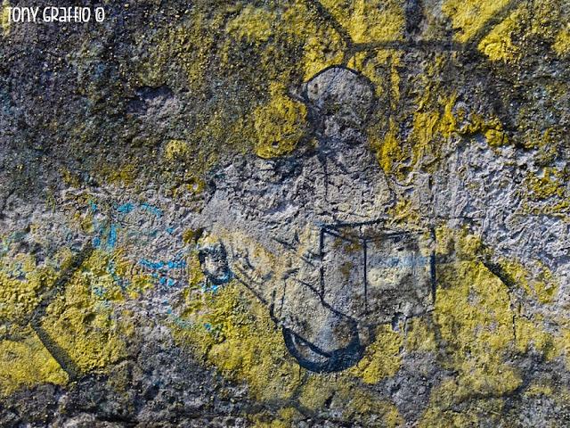 Graffiti Blu e Ericaeilcane