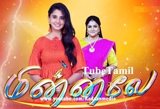 Minnale 08-02-2020 Tamil Serial