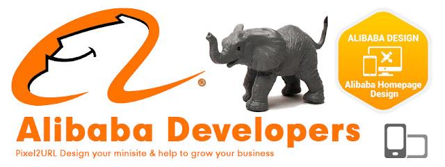 Alibaba Minisite Design in Sialkot