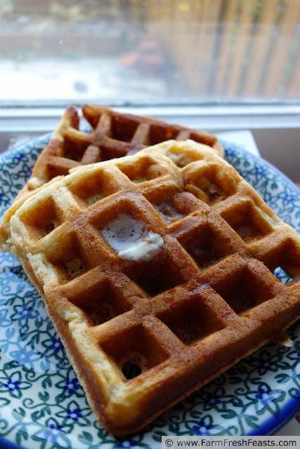 Low and Slow Pear Butter Waffles