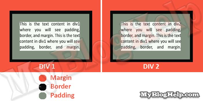 How To Use Css Padding And Margin Properties Css Tutorial 09