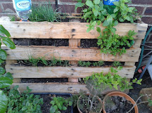 Free Upcycled Pallet Herb Planter - Eco Thrifty Living