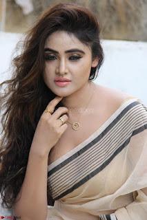 Sony Charishta in Brown saree Cute Beauty   IMG 3605 1600x1067.JPG