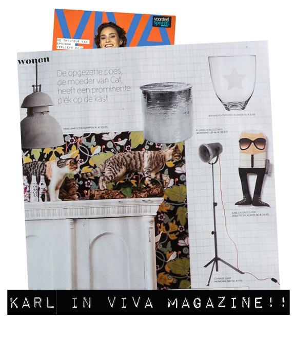 viva magazine karl lagerfeld my name is simone