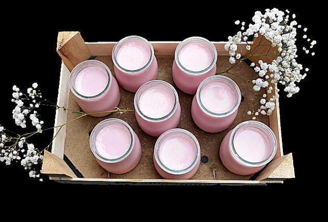 receita iogurte de gelatina sem acucar