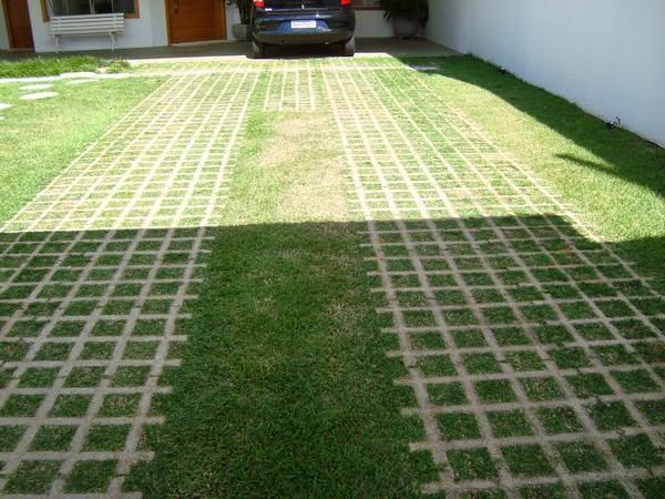 Área verde em espaço público