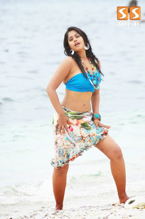 Bollywood Actress Bindu Madhavi Hot Photoshoot picture gallery sexy