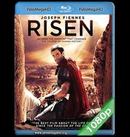 LA RESURRECCIÓN DE CRISTO (2016) FULL 1080P HD MKV ESPAÑOL LATINO