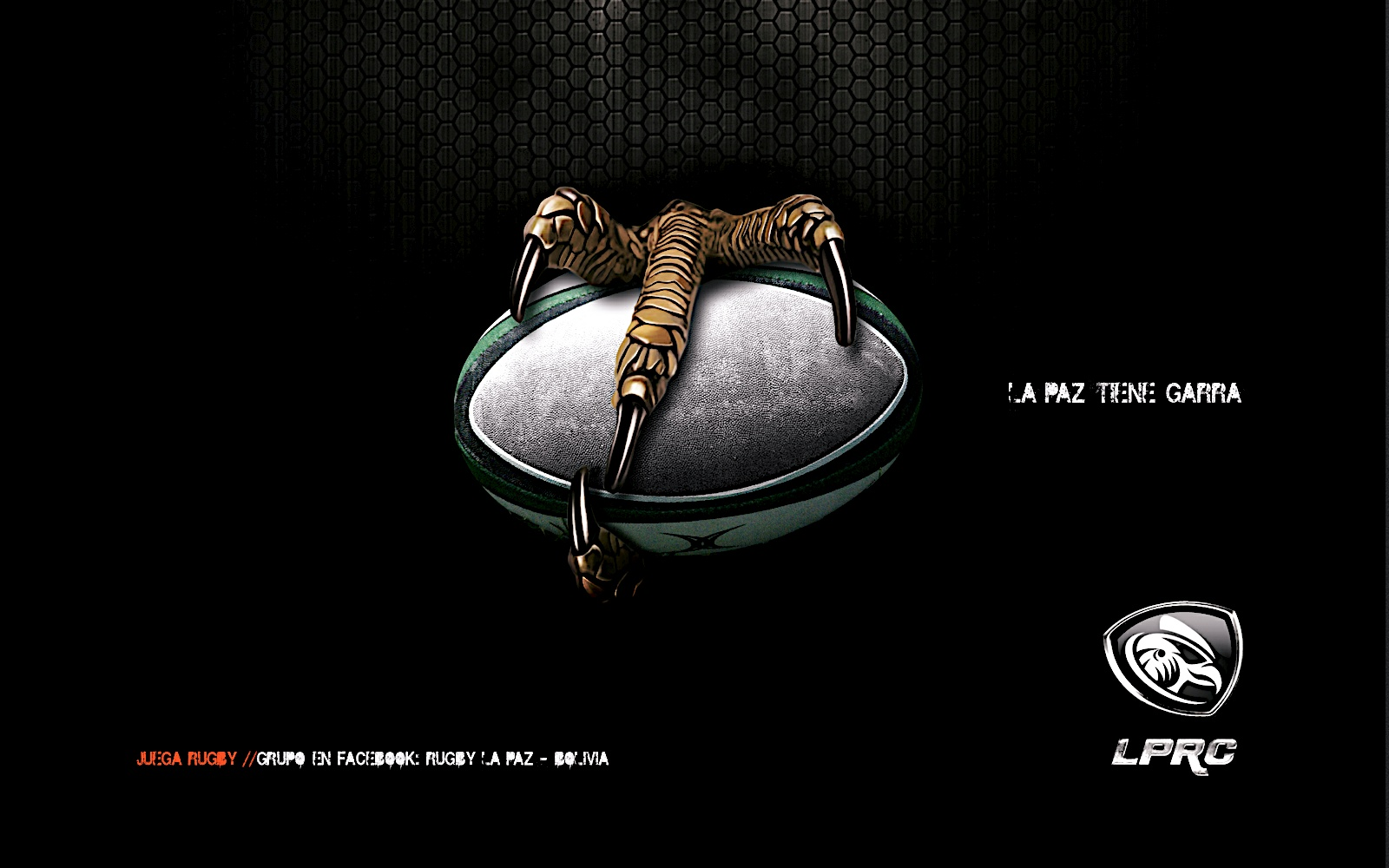 photos rugby wallpapers - photo #22