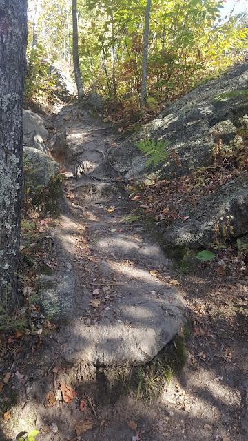 Sentier de départ pour la montagne verte