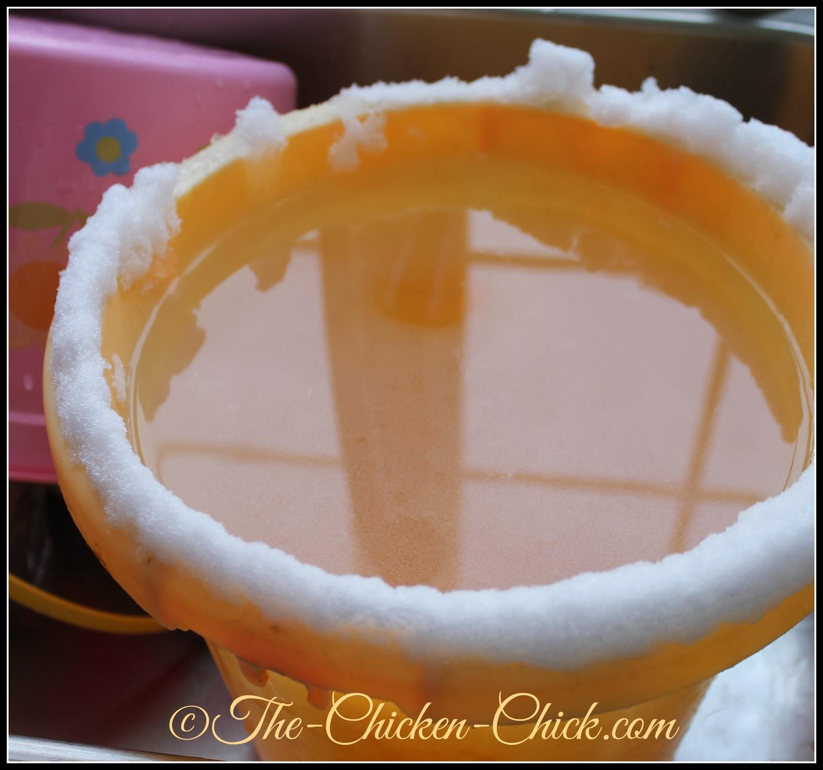 The Chicken Chick 174 Winter Ice Lanterns